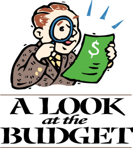 a-look-at-the-budget person with magnifying glass