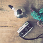 8 inspirations for Instagram