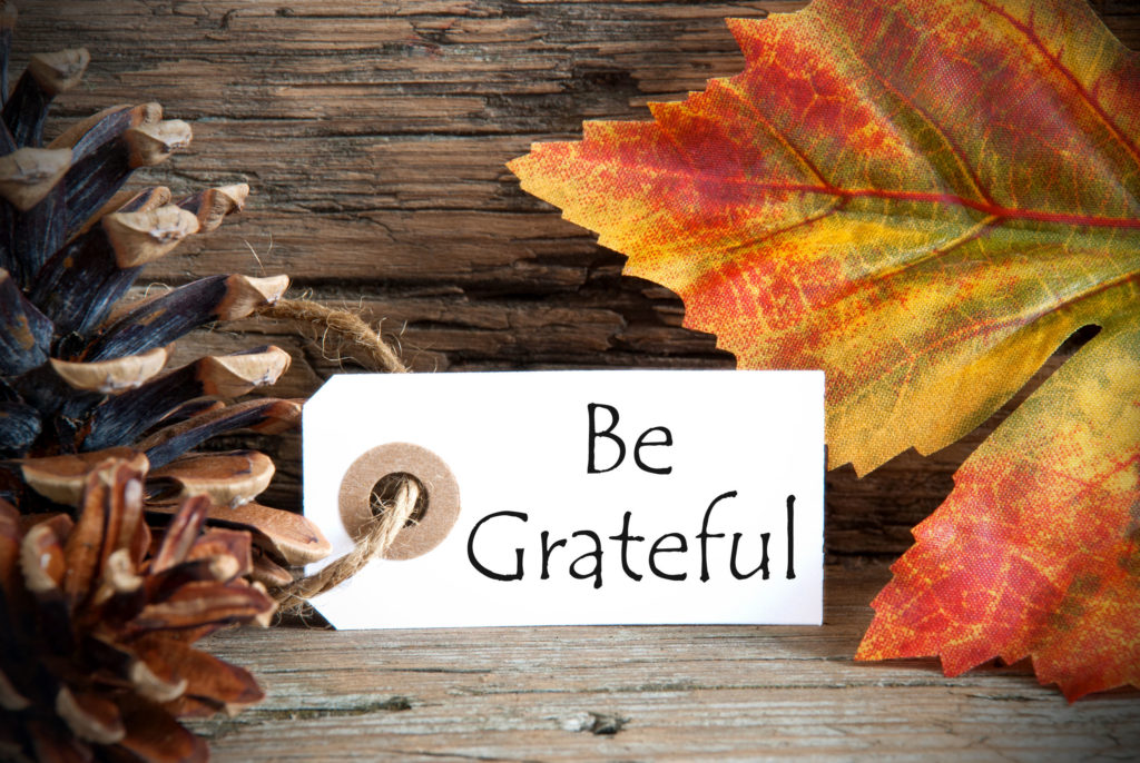 Fall Grateful Sign